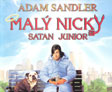 Anketa o DVD Malý Nicky