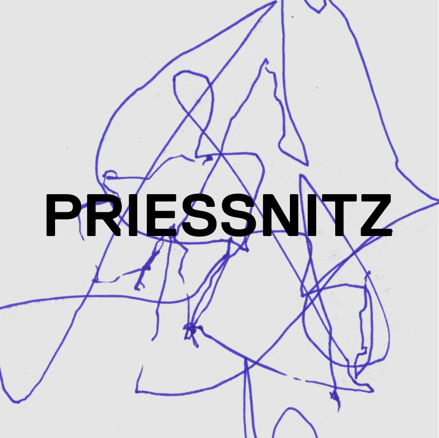 Vyhrajte novou desku skupiny Priessnitz!