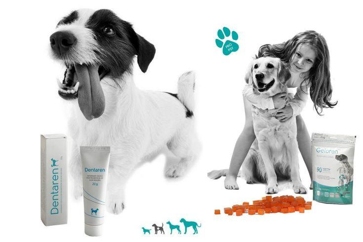 Soutěž o veterinární přípravky Aktivní zvíře pro zdraví domácích mazlíčků
